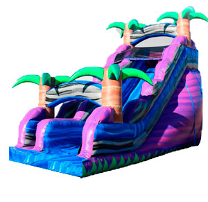 Happy Kids Inflatables - Purple Crush Inflatable Slide Dry